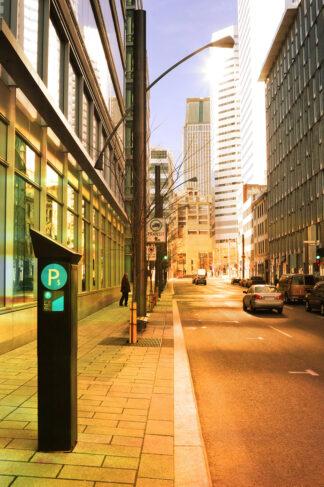 Downtown Boulevard Street View